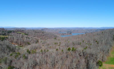 Maynardville Residential Lots & Land For Sale: Hurricane Hollow Rd