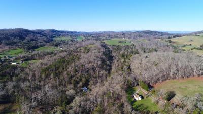 maynardville Residential Lots & Land For Sale: 149 Lambdin Rd