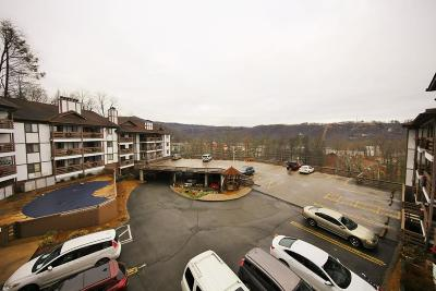 Gatlinburg Condo/Townhouse For Sale: 616 Turkey Nest Rd #Unit 206