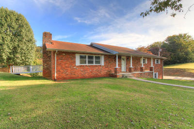 Anderson County, Blount County, Knox County, Loudon County, Roane County Single Family Home For Sale: 1300 Sandy Shore Drive