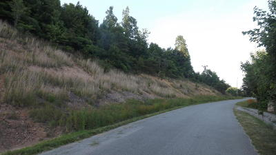 Claiborne County Residential Lots & Land For Sale: Chimney Rock Rd
