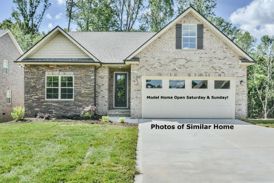 Knoxville TN Single Family Home For Sale: $399,000
