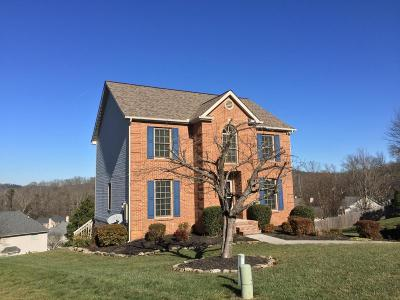 Knox County Single Family Home For Sale: 10124 Delle Meade Drive