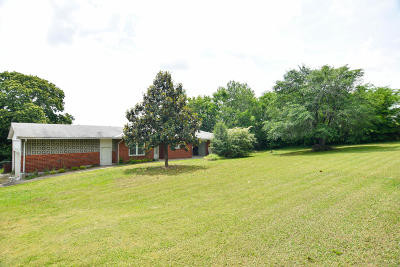 Strawberry Plains Single Family Home For Sale: 533 S Carter School Rd