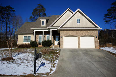 Anderson County Single Family Home For Sale: 113 Crossroads Blvd