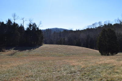 Residential Lots & Land Sold: Summit Hill Rd
