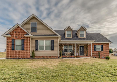Strawberry Plains Single Family Home For Sale: 702 Commonwealth Ave