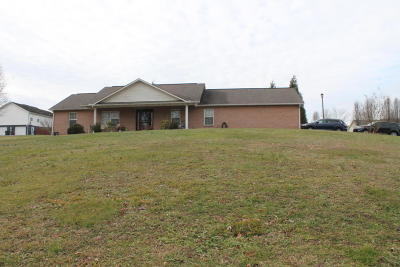 Sevierville Single Family Home For Sale: 1571 Turtle Dove Tr