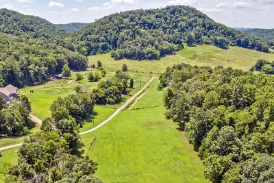 Knoxville Residential Lots & Land For Sale: 8456 Trundle Rd