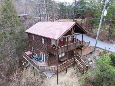 Sevierville Single Family Home For Sale: 1733 Walker Tr