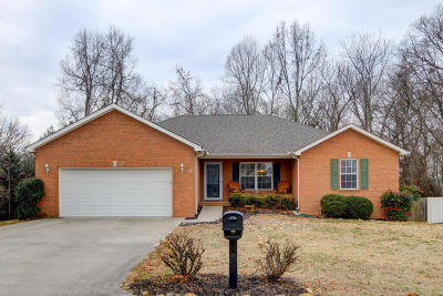 Anderson County Single Family Home For Sale: 4094 Mountain Vista Rd