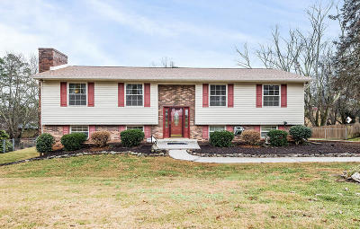 Knoxville Single Family Home For Sale: 7828 Ramsgate Drive