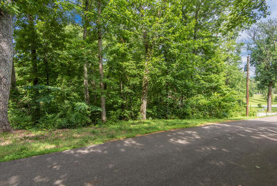Knoxville Residential Lots & Land For Sale: 2441 Smithland Lane