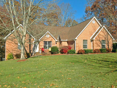 Strawberry Plains Single Family Home For Sale: 483 Casey Lane