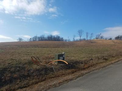 Anderson County, Campbell County, Claiborne County, Grainger County, Hancock County, Hawkins County, Jefferson County, Union County Residential Lots & Land For Sale: Lot 34 Cindy Court