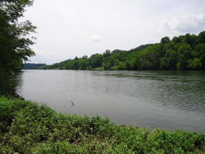 Knoxville Residential Lots & Land For Sale: Hodges Landing Drive