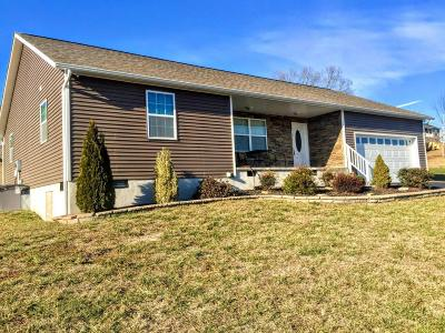 Sevier County Single Family Home For Sale: 764 Tuckahoe View Tr