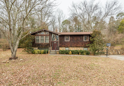 Knoxville Single Family Home For Sale: 1015 Buckthorn Drive