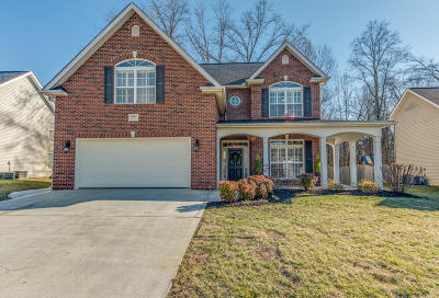Knoxville Single Family Home For Sale: 10822 Gable Run Drive