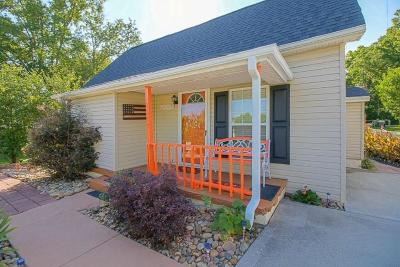 Knoxville Single Family Home For Sale: 1517 Delaware Ave
