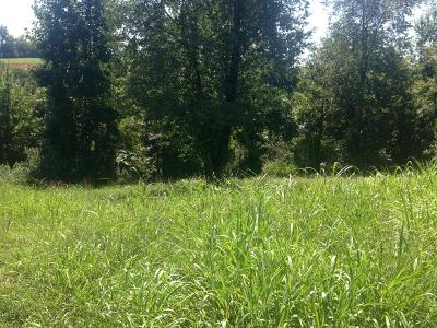 Blount County, Loudon County, Monroe County Residential Lots & Land For Sale: 450 Marsh Hawk Drive