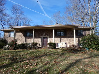 Tazewell Single Family Home For Sale: 704 Fan St