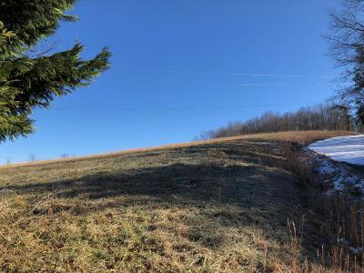 Anderson County, Campbell County, Claiborne County, Grainger County, Hancock County, Hawkins County, Jefferson County, Union County Residential Lots & Land For Sale: Lot 18 Overton Rd