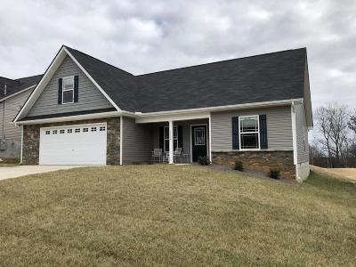Knoxville Single Family Home For Sale: 1132 Blackstone View Lane