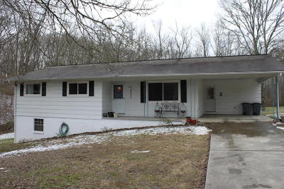 Anderson County, Campbell County, Claiborne County, Grainger County, Union County Single Family Home For Sale: 525 2nd Norway Lane