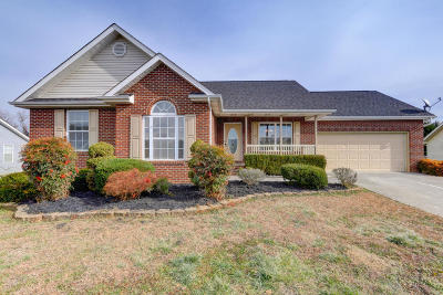Blount County Single Family Home For Sale: 972 Mossy Grove Lane