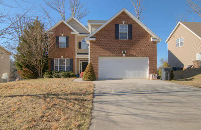 Knoxville Single Family Home For Sale: 3019 Oakleigh Township Drive
