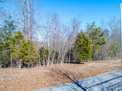 Lafollette Residential Lots & Land For Sale: Norris View Lane