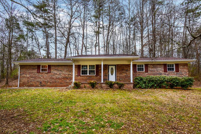Union County Single Family Home For Sale: 206 Chestnut Ridge Rd