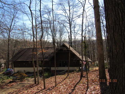 Anderson County, Campbell County, Claiborne County, Grainger County, Union County Single Family Home For Sale: 216 Wealden Rd