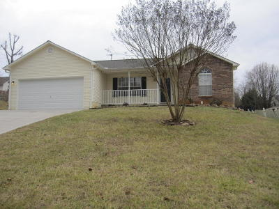 Knoxville Single Family Home For Sale: 1021 Sugar Creek Lane