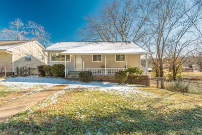 Knoxville Single Family Home For Sale: 2628 Truman Ave