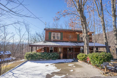 Gatlinburg Single Family Home For Sale: 923 Pine Cone Way