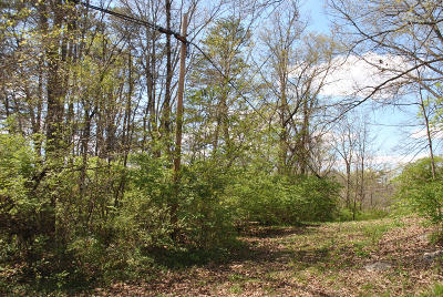Clinton Residential Lots & Land For Sale: 1.36 Acres W Maire Ave