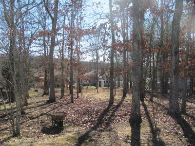 Fairfield Glade Residential Lots & Land For Sale: 117 Winslow Lane