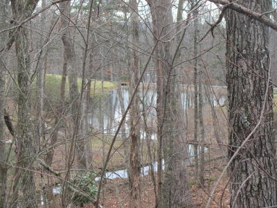 Fairfield Glade Residential Lots & Land For Sale: 478 Lakeview Drive