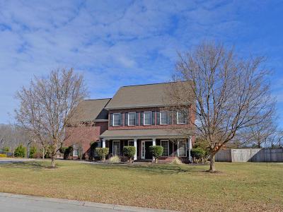 Lenoir City Single Family Home For Sale: 300 Yellowstone Lane