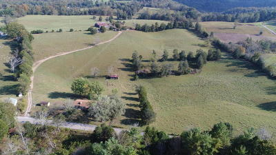 New Tazewell Residential Lots & Land For Sale: Straight Creek Rd