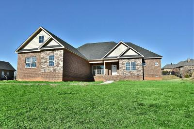 Maryville Single Family Home For Sale: 3319 Bridgewater Crossing