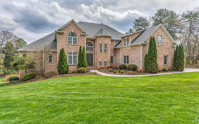 Knoxville Single Family Home For Sale: 3014 Whispering Cove Drive