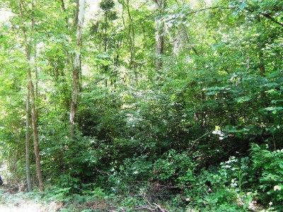 Jacksboro Residential Lots & Land For Sale: Hiwassee Dr