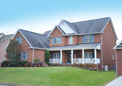 Knoxville Single Family Home For Sale: 956 Annatole Lane