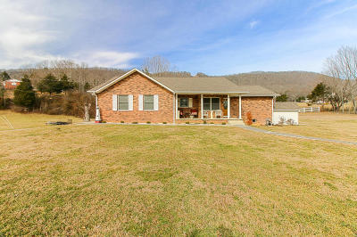 Jacksboro Single Family Home For Sale: 538 Butter And Egg