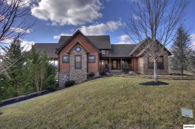 Sevierville Single Family Home For Sale: 3054 Misty Bluff Tr