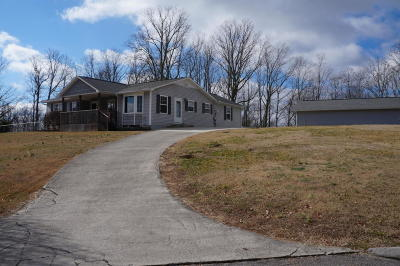 Bean Station Single Family Home For Sale: 481 Meadowview Lane