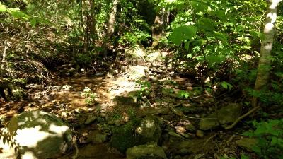 Blount County Residential Lots & Land For Sale: 1970 Carrs Creek Rd